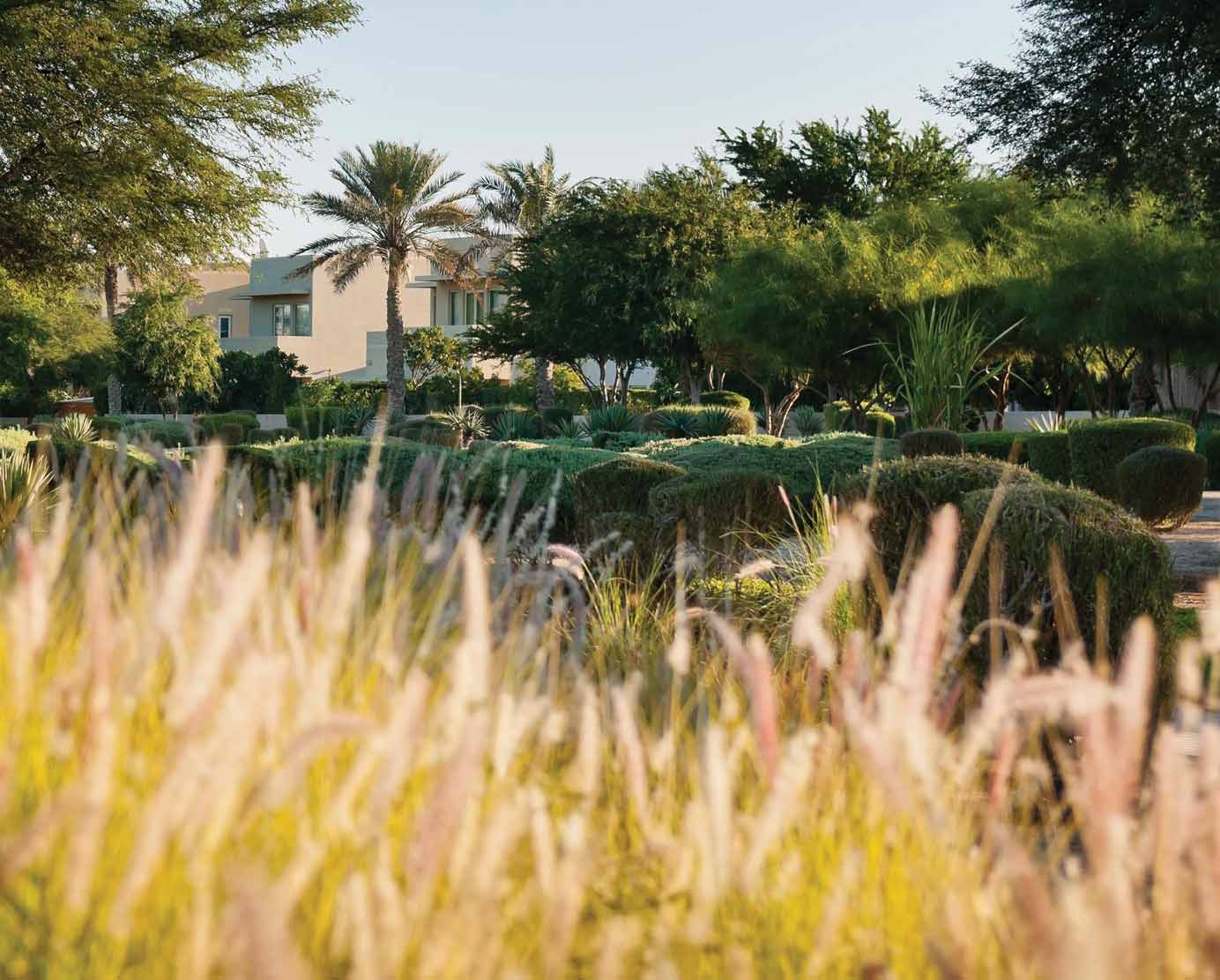 AN IDYLLIC ADDRESS 02/LA AVENIDA 2 ARABIAN RANCHES
