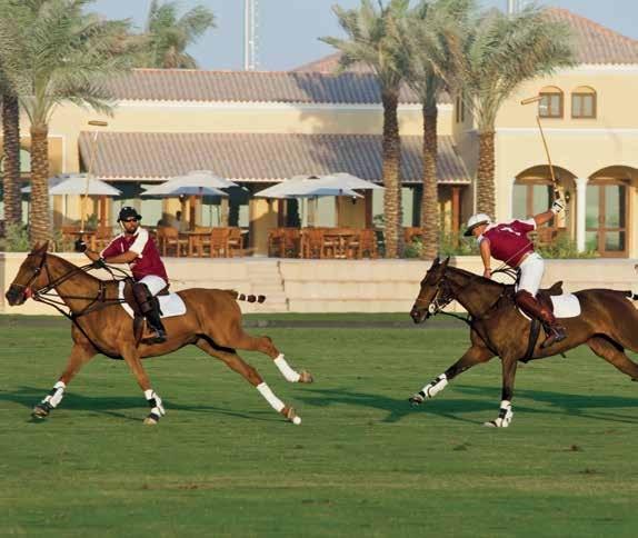 Heritage of harmony_Aseel Villas at Arabian Ranches